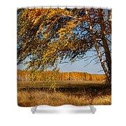 Autumn Breeze Shower Curtain