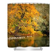 Autumn Calm Shower Curtain