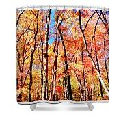 Autumn Canopy Shower Curtain