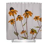 Autumn Card  Shower Curtain