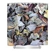 Autumn Carpet II Shower Curtain