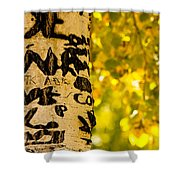 Autumn Carvings Shower Curtain