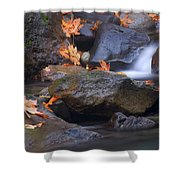 Autumn Cascades Shower Curtain