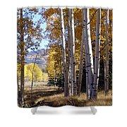 Autumn Chama New Mexico Shower Curtain