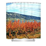 Autumn Cherry Orchard Shower Curtain