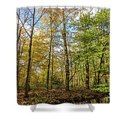 Autumn Color Reflections Shower Curtain