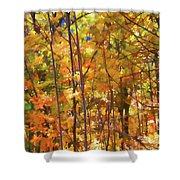Autumn Colored Shower Curtain