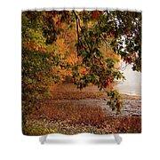 Autumn Colors 37 Shower Curtain