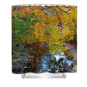 Autumn Colors Of Reflection Shower Curtain