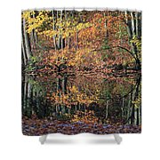 Autumn Colors Reflect Shower Curtain