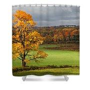 Autumn Colors Shower Curtain