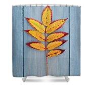 Autumn Colours On Blue Shower Curtain
