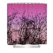 Autumn Congressional Shower Curtain