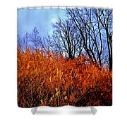 Autumn Contrasts Shower Curtain