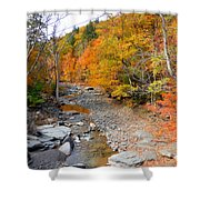 Autumn Creek 3 Shower Curtain
