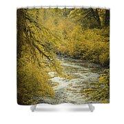 Autumn Creek Shower Curtain