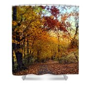 Autumn Crescendo Shower Curtain