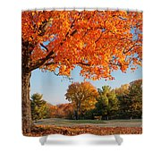 Autumn Dawn Shower Curtain