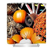 Autumn Display Shower Curtain