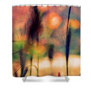 Autumn Dreams Abstract Shower Curtain
