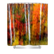 Autumn Dreams Shower Curtain