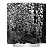 Autumn Drive Bnw Shower Curtain