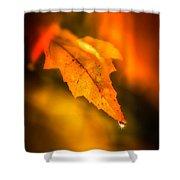 Autumn Drops Shower Curtain