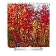 Autumn Experience Shower Curtain