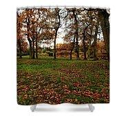 Autumn Fields, Shower Curtain
