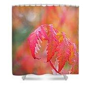 Autumn Fires Shower Curtain