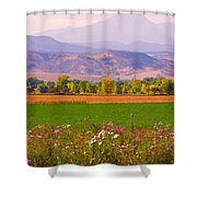 Autumn Flowers At Harvest Time Shower Curtain