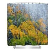 Autumn Fog And Snow Shower Curtain