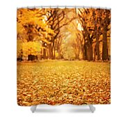 Autumn Foliage - Central Park - New York City Shower Curtain by Vivienne Gucwa