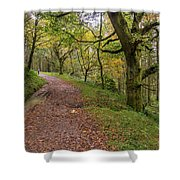 Autumn Forest Path - Shower Curtain