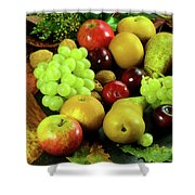 Autumn Fruits. Shower Curtain