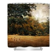 Autumn Geese Shower Curtain