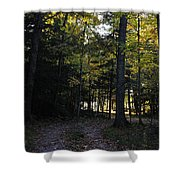 Autumn Glen Shower Curtain