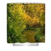 Autumn Glow Shower Curtain