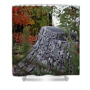 Autumn Gone-by Shower Curtain