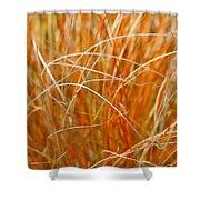 Autumn Grass Abstract Shower Curtain
