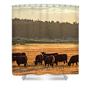 Autumn Herd Shower Curtain