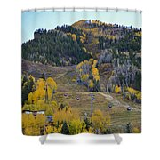 Autumn In Aspen Shower Curtain