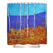 Autumn In Cloudcroft Shower Curtain