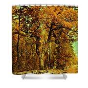 Autumn In Forest Shower Curtain