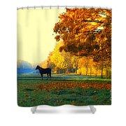 Autumn In Kathrines Way Shower Curtain