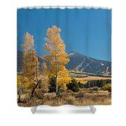 Autumn In Hart Pairie Shower Curtain