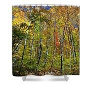 Autumn In Schooley's Mountain Park 2 Shower Curtain