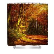 Autumn In Siebengebirge Shower Curtain