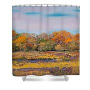 Autumn In The Adirondack Mountains Shower Curtain