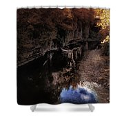Autumn In The Canyon Shower Curtain